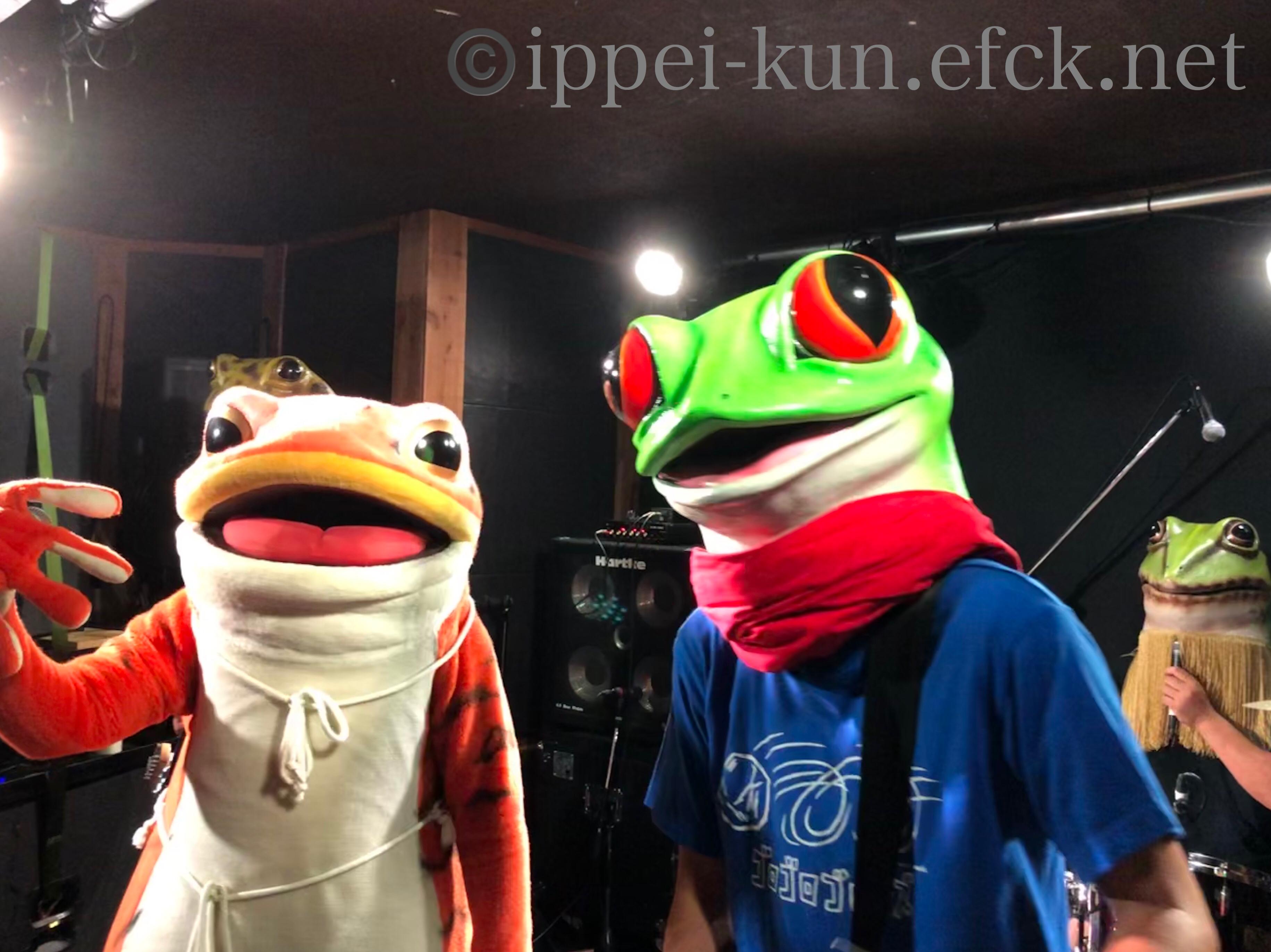 ラスト松山!?25th LIVE観察日記~ #ゴロゴロゴロンズ vol.15~